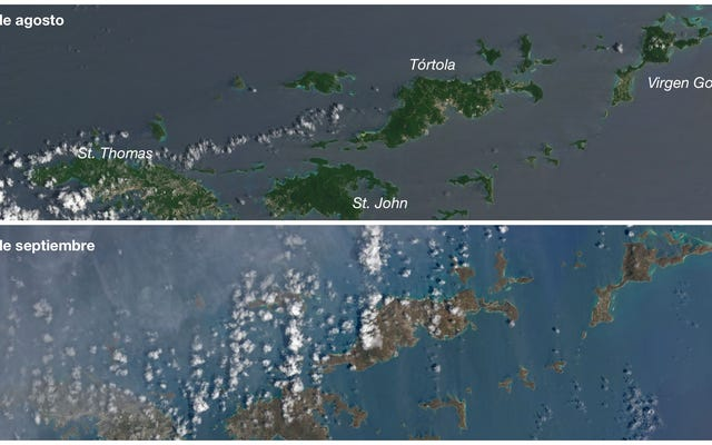 カリブ海の島々はハリケーンイルマから(文字通り)茶色に変わりました