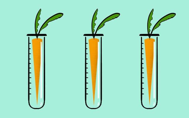असली कारण लोग अभी भी आनुवंशिक रूप से संशोधित फसलों के बारे में इतने भ्रमित हैं