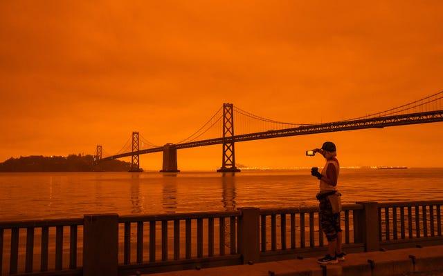 Kalifornijskie czerwone niebo to nie tylko przebłysk naszej przyszłości - to przeszłe błędy, które ożywają