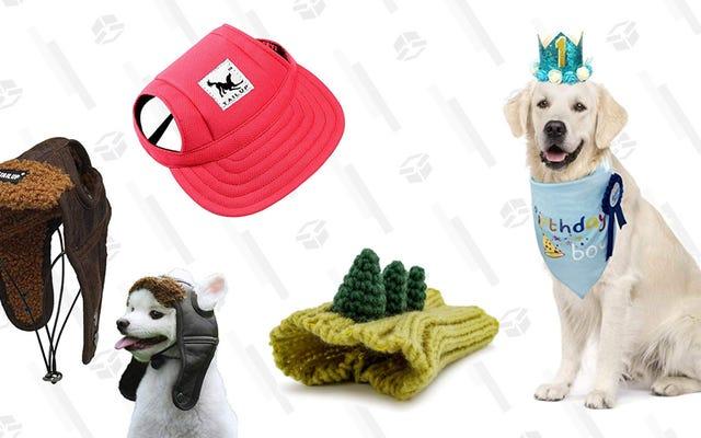 私は私の犬にこれらの帽子の1つを買うべきですか?