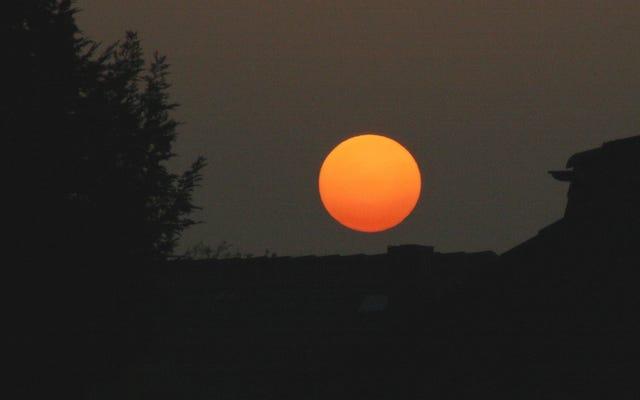 ダストプルームがどのように太陽を赤くしたか