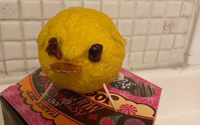 TIL lemon pig sebenarnya bukan tradisi Tahun Baru sama sekali