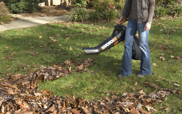 この70ドルのWorxTriVacで落ち葉を吹き飛ばし、掃除機をかけ、根おおいをします