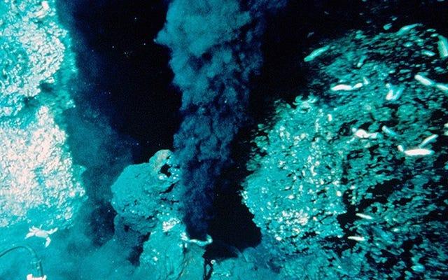 深海ベントは古代海洋炭素の謎を解くかもしれない