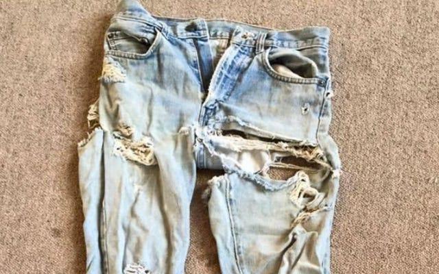 """Calvin Johnson đang bán đấu giá chiếc """"quần jean punk"""" cũ của mình"""