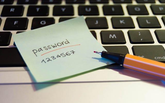 Devo continuare a utilizzare il mio gestore di password?
