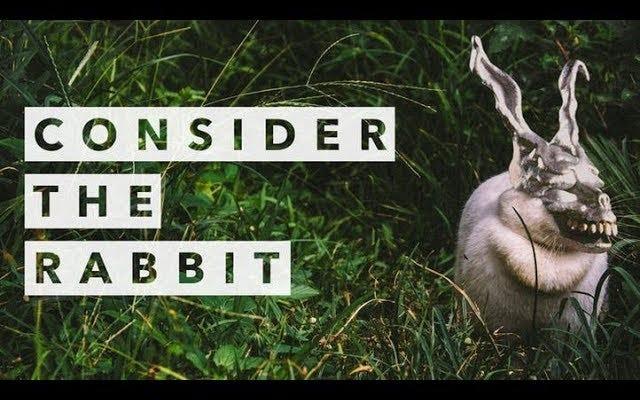 L'étrange histoire de terrifiants lapins dans le film