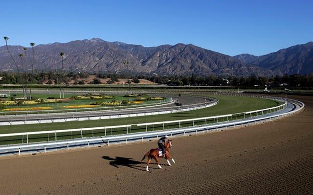 29-я лошадь погибла в Санта-Аните через день после того, как официальные лица приказали треку прекратить проведение гонок