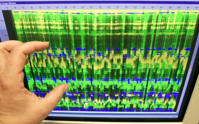 Microsoft được biết là muốn sử dụng DNA để lưu trữ dữ liệu đám mây