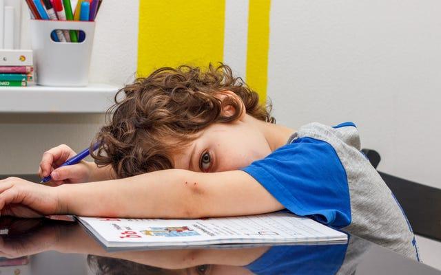 あなたはあなたの子供を宿題からオプトアウトすべきですか?