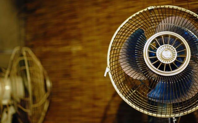 Kapan Anda harus menyalakan kipas angin untuk menghindari lebih banyak panas dan kapan itu kontraproduktif