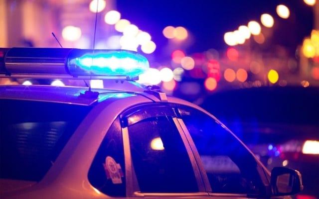 ジョージア州警官が以前の容疑者の「説明に一致した」19歳を致命的に撃った後のGBI調査