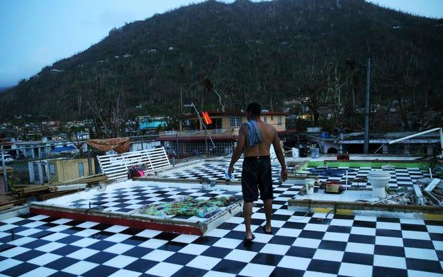 政治はプエルトリコの問題をより困難にしている
