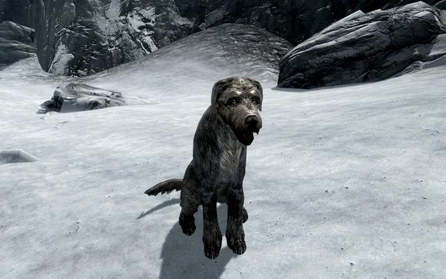 स्किरिम प्लेयर का कहना है कि वह सिर्फ एक आभासी कुत्ते को अपनाने के लिए नर्क में गया था