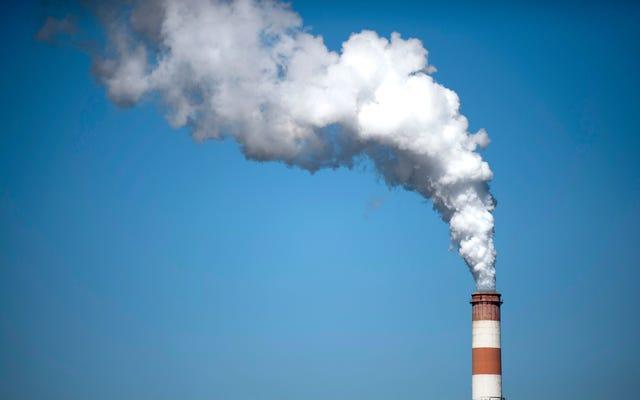 La contaminación del aire mata a más personas al año que los cigarrillos, y los combustibles fósiles son la razón