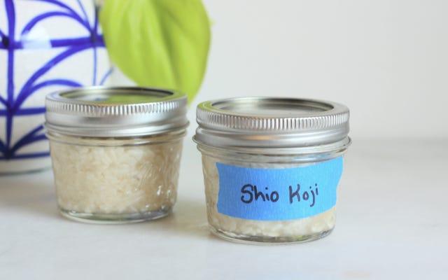 塩麹はあなたの食べ物が最高の自分になるのを助けます