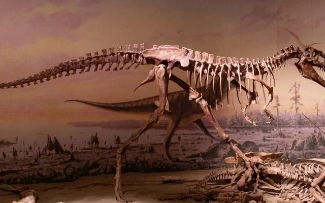 Những con khủng long như T. Rex tàn bạo hơn những gì chúng ta nhận ra, Đề xuất nghiên cứu mới