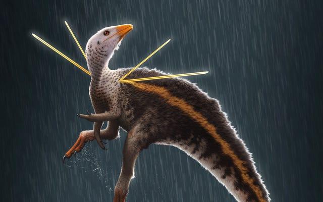 Chú khủng long lạ mắt với đồ trang trí trên vai kỳ quái là con công của kỷ Phấn trắng