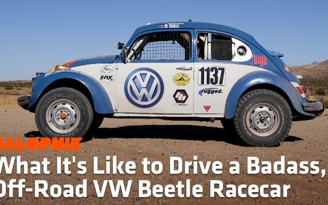 Com'è guidare uno scarabeo da corsa fuoristrada tosto