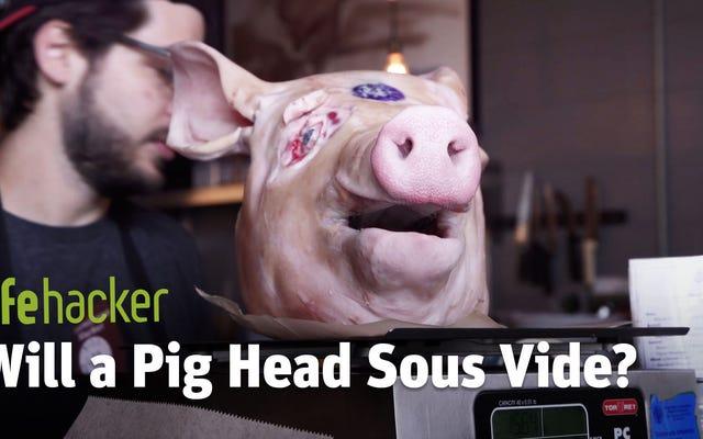 Will It Sous Vide ?: A cabeça de um porco