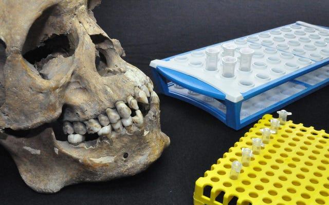 Ba bộ xương châu Phi được tìm thấy ở Mexico cho thấy nỗi kinh hoàng của chế độ nô lệ sớm ở thế giới mới