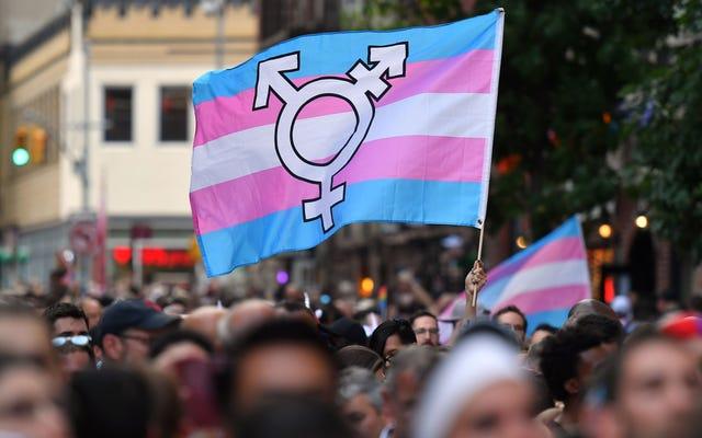 Pozew profesora dotyczący używania zaimków transpłciowych został odrzucony przez sędziego