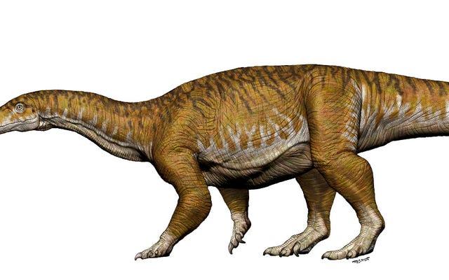Quái vật kỷ Trias này đã mở đường cho những con khủng long lớn nhất thế giới
