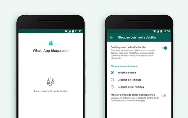 Как защитить свои чаты в WhatsApp с помощью отпечатка пальца