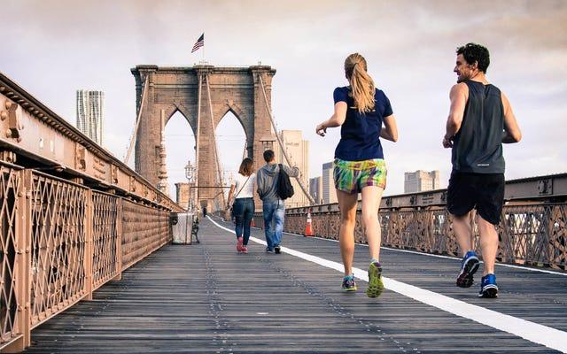 กางเกงขาสั้นวิ่งที่ดีที่สุดห้าตัวตามที่ผู้อ่านของเราบอก