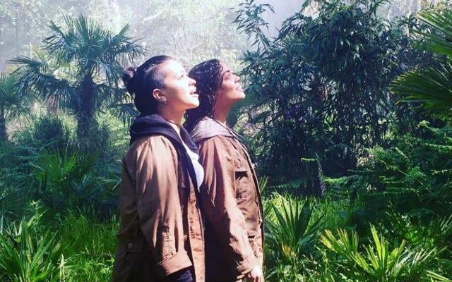 Film Berikutnya Mantan Sutradara Machina Alex Garland Akan Menjadi Sangat Cantik