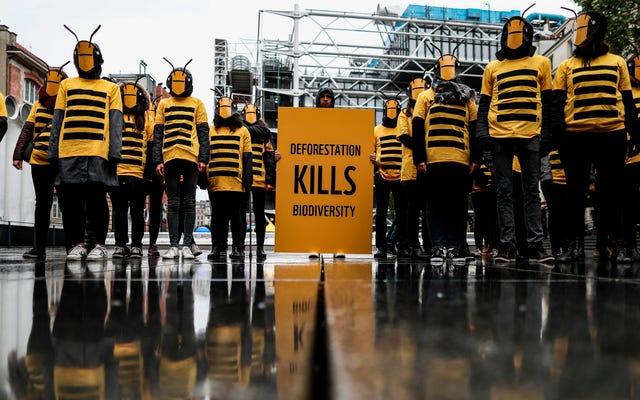 Bu Birleşmiş Milletler Antlaşması İklim ve Yok Oluş Krizleriyle Mücadele Edecek