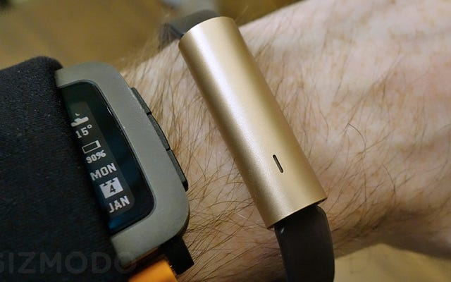 Misfitの新しいRayFitnessTrackerで通常の時計バンドを使用できます