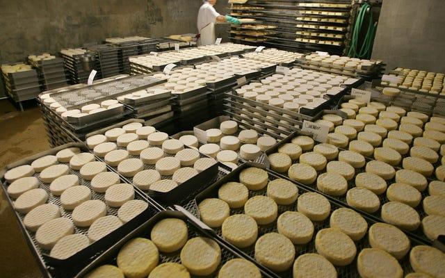 一部のディナーパーティーのゲストは、MDMAをチーズで包み、それを「ブリーイング」と呼んでいると伝えられています。