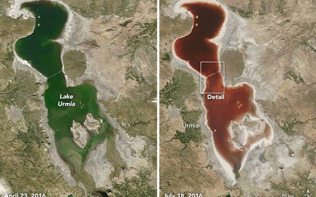 なぜこの湖は突然血を赤くしたのですか?