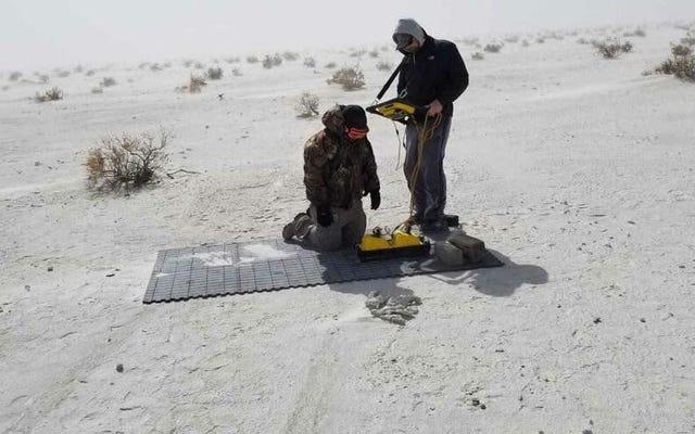 レーダースキャンは、マンモストラックに埋め込まれた古代の人間の足跡を明らかにします