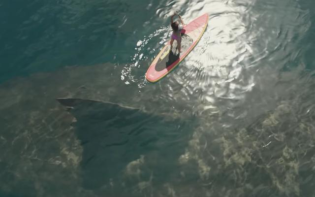 आज के ट्रेलर हैप्पी आवर में एक बड़ी शार्क, बड़ी कॉमेडी और एक बड़ा परिवार है