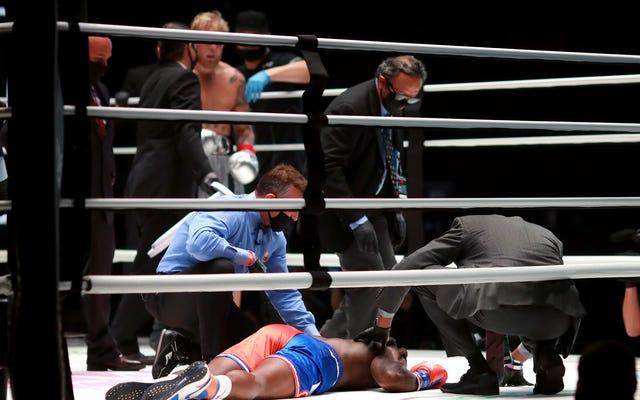 ショーを盗むジェイクポールはボクシングの危険な前兆です