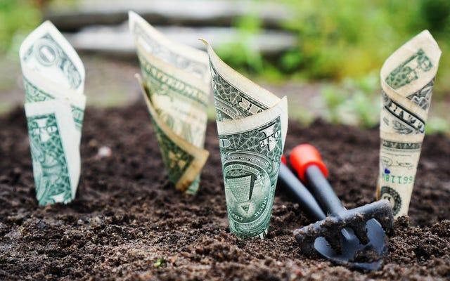 คุณควรลงทุนในซีดีก่อนที่อัตราดอกเบี้ยจะสูงสุดหรือไม่?