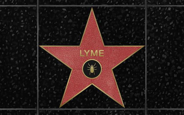 有名人が慢性ライム病の見方をどのように変えているか