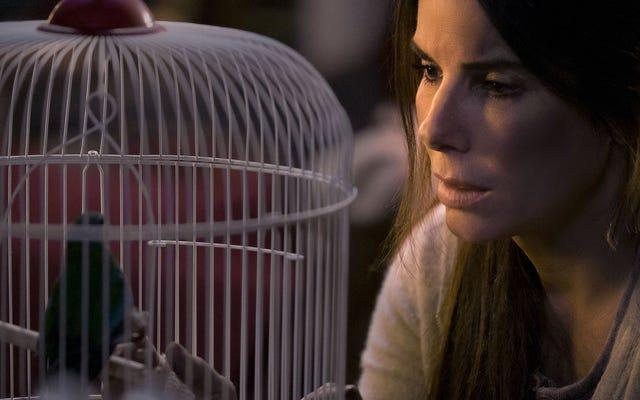 Bird Box, una película para tu cerebro de pájaro