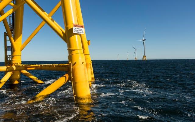 Битва за привлечение морской ветровой энергии в Америку