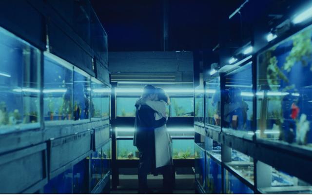 Eine rechtzeitige Pandemie testet die Liebe eines Paares in dem ansonsten unvergesslichen kleinen Fisch