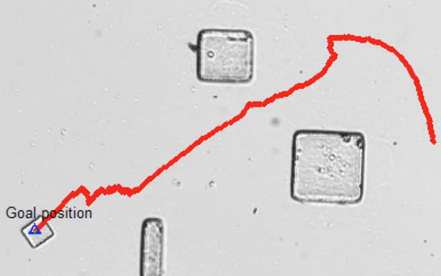 Microbots Ini Mengemudi Menggunakan Listrik dan Bakteri Yang Menyebabkan Infeksi Saluran Kemih