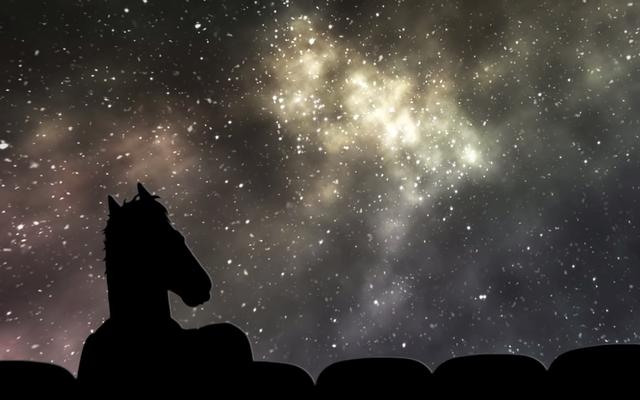 Создатель BoJack Horseman хочет, чтобы Netflix дал кредиты