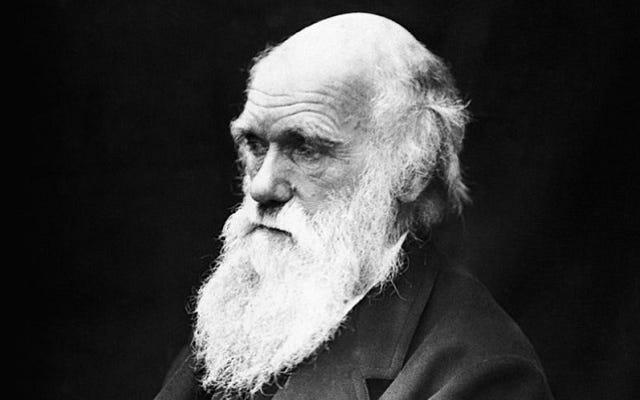 ¿Qué se metió en la boca Charles Darwin? Prácticamente todo.