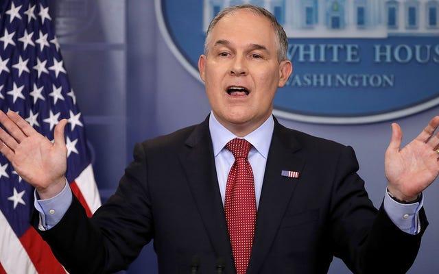 トランプ大統領のEPAは、薪の燃焼は風力や太陽エネルギーのようにカーボンニュートラルであると述べています
