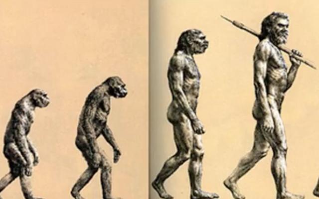 あなたが人間の進化についてあなたの人生を通して見てきたこのイメージは、現実とはほとんど関係がありません