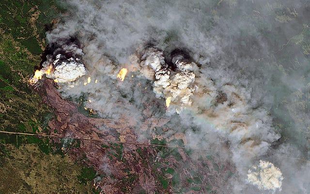 カナダの山火事はすでに米国で日没を赤くしています