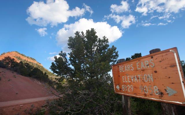 支持者は、ネイティブアメリカンとビジネスに悪いユタ州の国定公園を削減するトランプ計画を言う