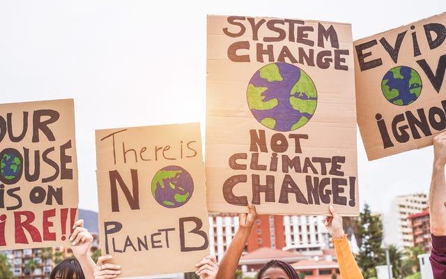 Un libro più venduto, una coppia di influencer ambiziosi e il maglione da 400 dollari che costringe gli attivisti per il clima a fare i conti